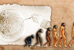 penciptaan, evolusi